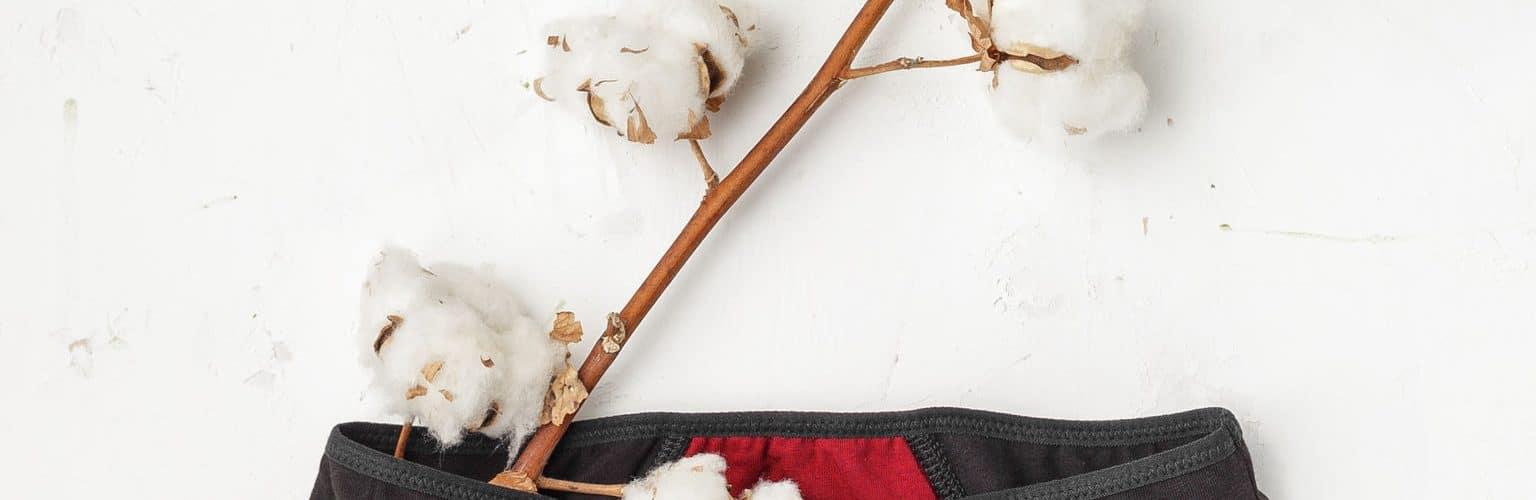 culotte-menstruelle-en-coton